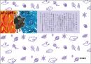 しんらんさまと白い道(紙芝居)|東本願寺出版